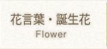 誕生花・花言葉