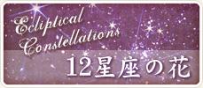 12星座の花