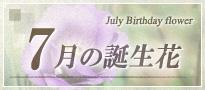 7月の誕生花