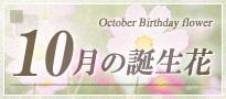 10月の誕生花