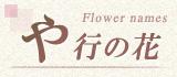 や行から始まる名前の花