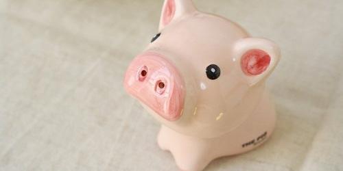 結婚に縁起の良い動物-豚