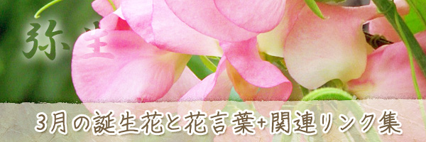 月の花 3月の誕生花と花言葉、英名や別名のまとめ