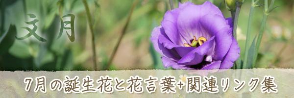 月の花 7月の誕生花と花言葉、英名や別名のまとめ