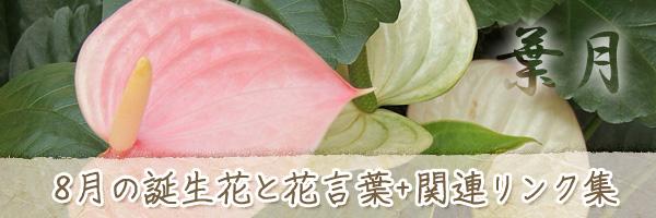 月の花 8月の誕生花と花言葉、英名や別名のまとめ
