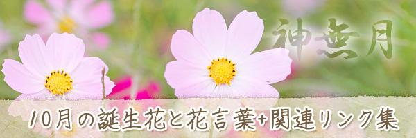 月の花 10月の誕生花と花言葉、英名や別名のまとめ