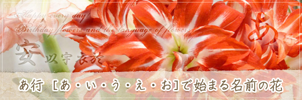 あ行から始まる名前の花の花言葉・誕生花