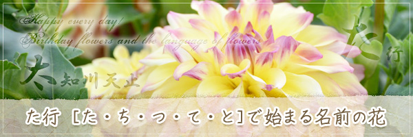 た行から始まる名前の花の花言葉・誕生花
