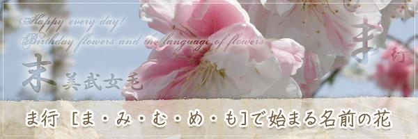 ま行から始まる名前の花の花言葉・誕生花