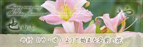 や行から始まる名前の花の花言葉・誕生花