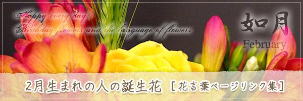 2月生まれの人の誕生花 [花言葉ページリンク集]