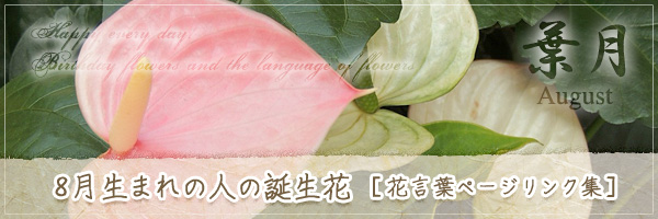8月生まれの人の誕生花 [花言葉ページリンク集]