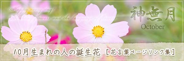 10月生まれの人の誕生花 [花言葉ページリンク集]