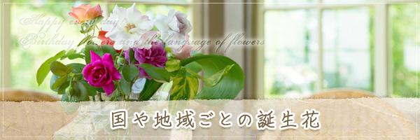 国や地域ごとの誕生花