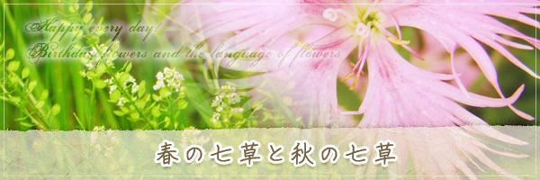 春の七草と秋の七草